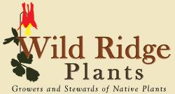 wild_ridge_logo_w_BG