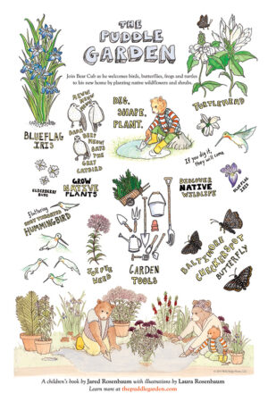 The Puddle Garden Poster
